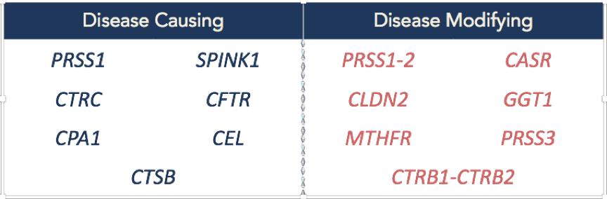 Pancreatic disease causing and disease modifying genes